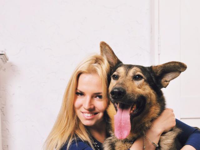 Собака.  Бeспородные и метисы . Отдам в дар в Москве