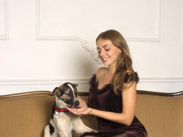 Отдам в дар: Красивый щенок Дунай в хорошие руки фото3