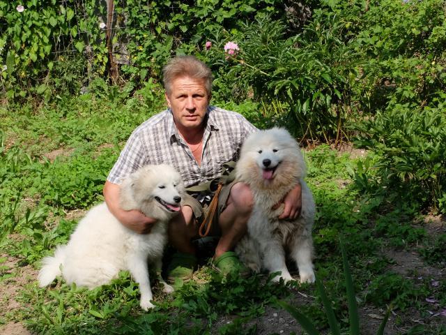 Предлагаю услуги: Передержка собак любых пород