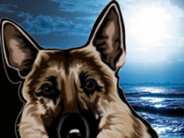Предлагаю услуги: Передержка собак в Москве в домашних условиях фото2