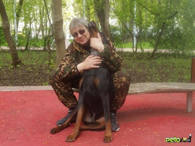 Предлагаю услуги: Кинолог профессиональная дрессировка собак